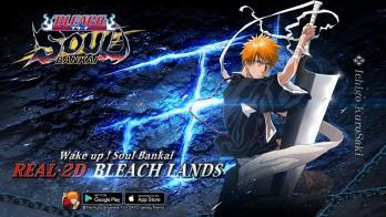 Bleach: Soul Bankai