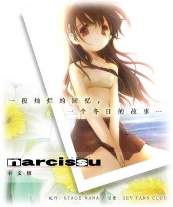 Narcissu